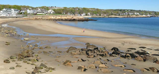 back-beach