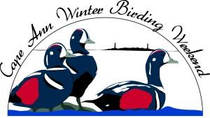 Chamber winter birding boat trip