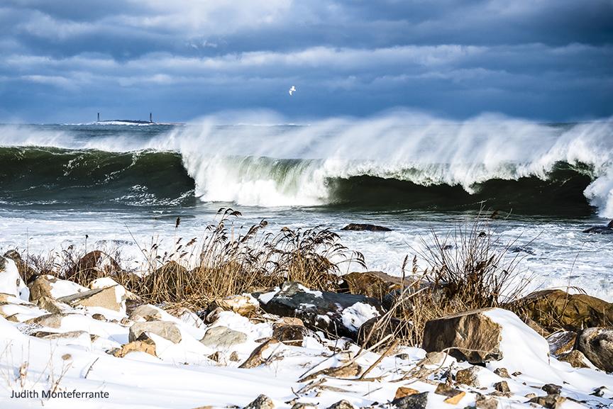 Cape Ann Winter