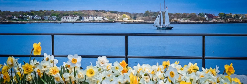 Spring on Cape Ann